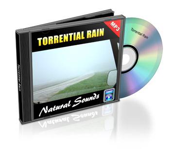 Now Age Books - Sound Scapes Audio Tracks - Torrential Rain - nowagebooks.com