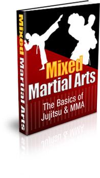 Now Age Books - MMA Basics - nowagebooks.com